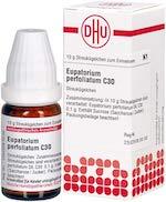 Eupatorium perfoliatum C30, 10 g Globuli Image